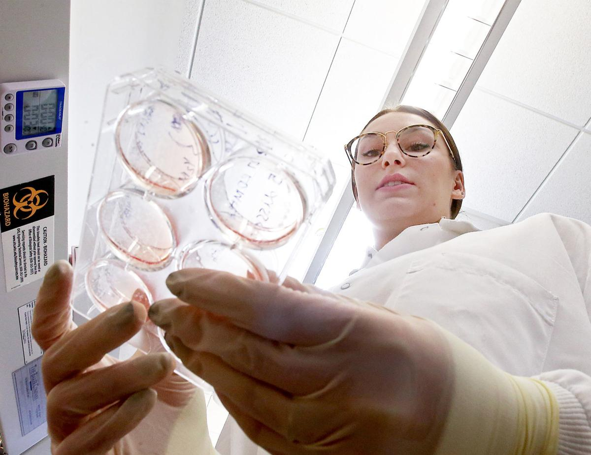 110418-wsj-news-stem-cells-gamm2