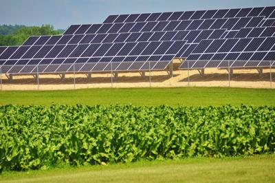 Don't let the NIMBYs slow Wisconsin's shift to solar