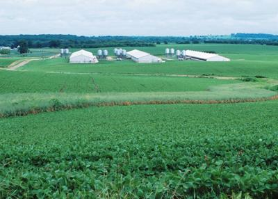 Technical expert committee provides update on livestock facility siting standards (copy)