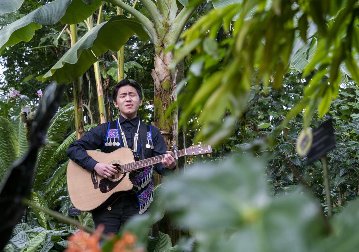 Rainforest Rhythms