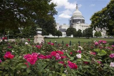 U.S. Capitol (copy)