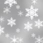Light snow logo