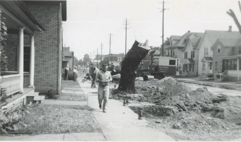 Williamson Street (1953)