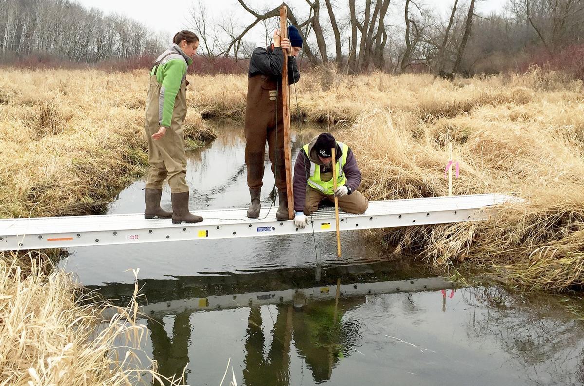 Dorn Creek core extraction
