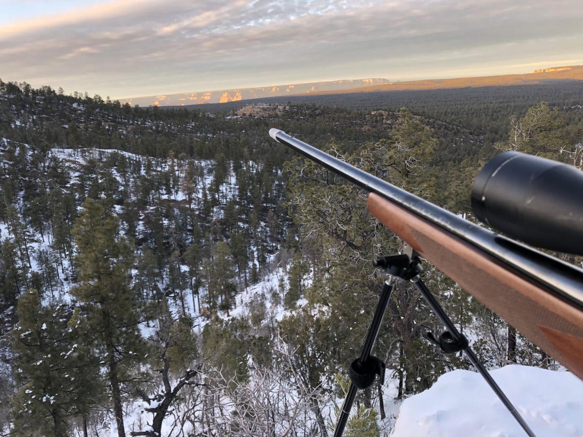 Northern Arizona elk hunt