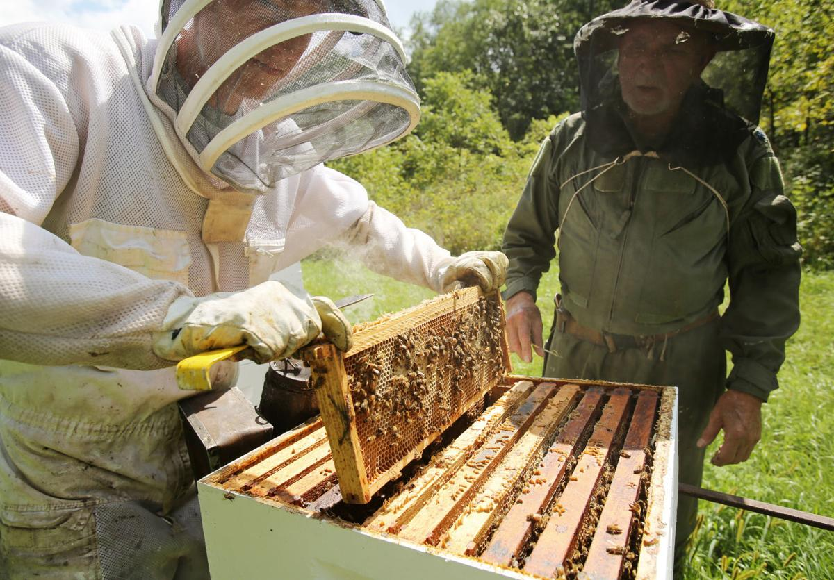 Entrepreneur S Beekeeping Hobby Evolves Into Successful Business