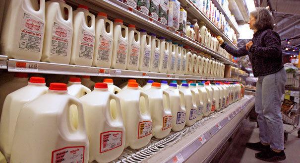 Milk on shelves in grocery