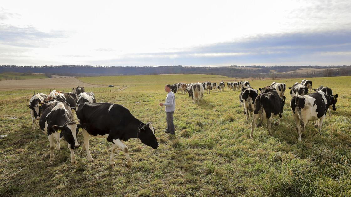 $10M grazing initiative seeks to boost farmers