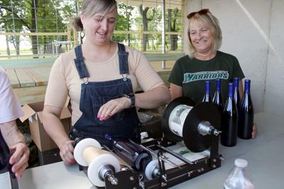 Region's wineries offer more than great taste
