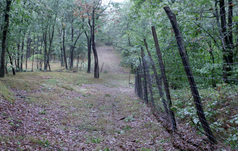 Woods and Meadow Hunting Preserve