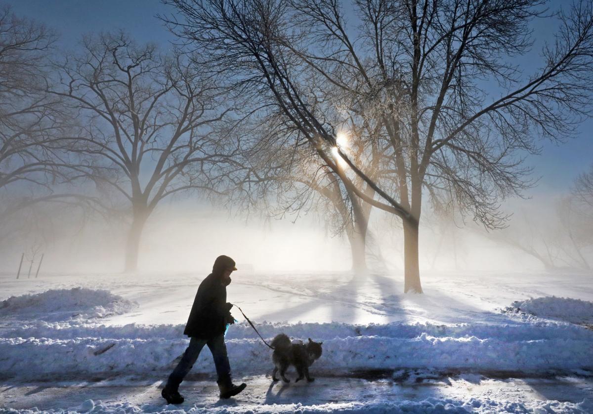 Walking dog in park photo