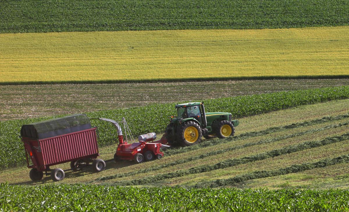 Dane County Crops