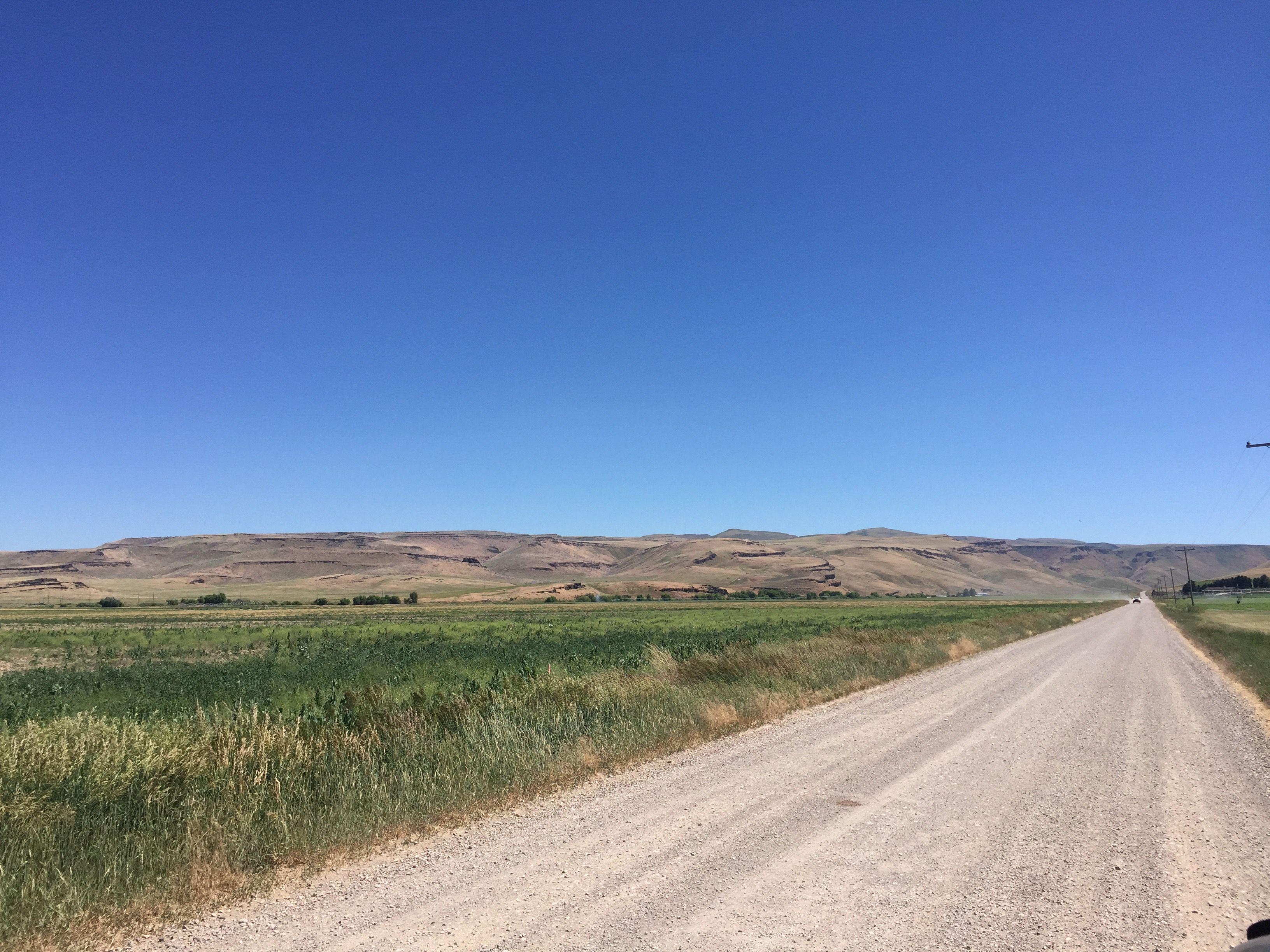 Rare 3 acre country building lot at the entrance to Dry Creek Canyon, south of Murtaugh image 1