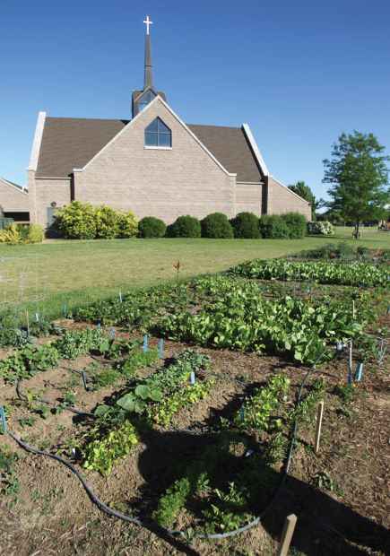 Ascension Community Garden