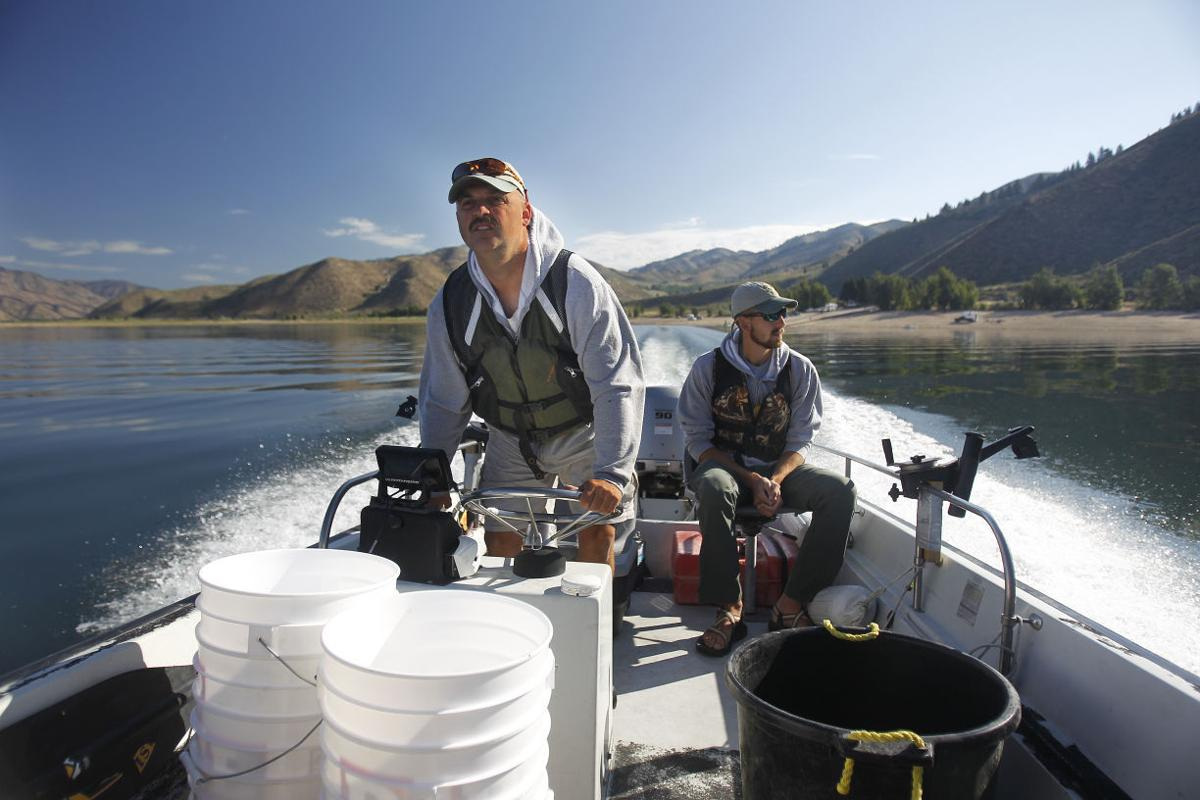 Storm reduces kokanee spawning habitat outdoors and for Fish and game office near me