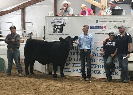 Sean Loughmiller's $63,000 steer