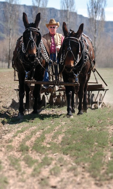 Farming The Old Way