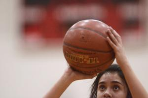 PHOTOS: Girls Basketball - Murtaugh Vs. Hansen