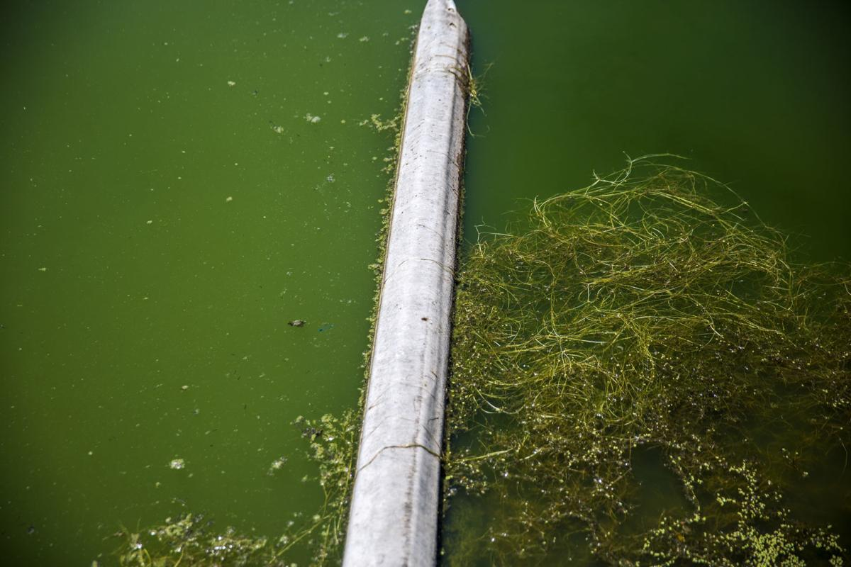 Hagerman improves wastewater treament system