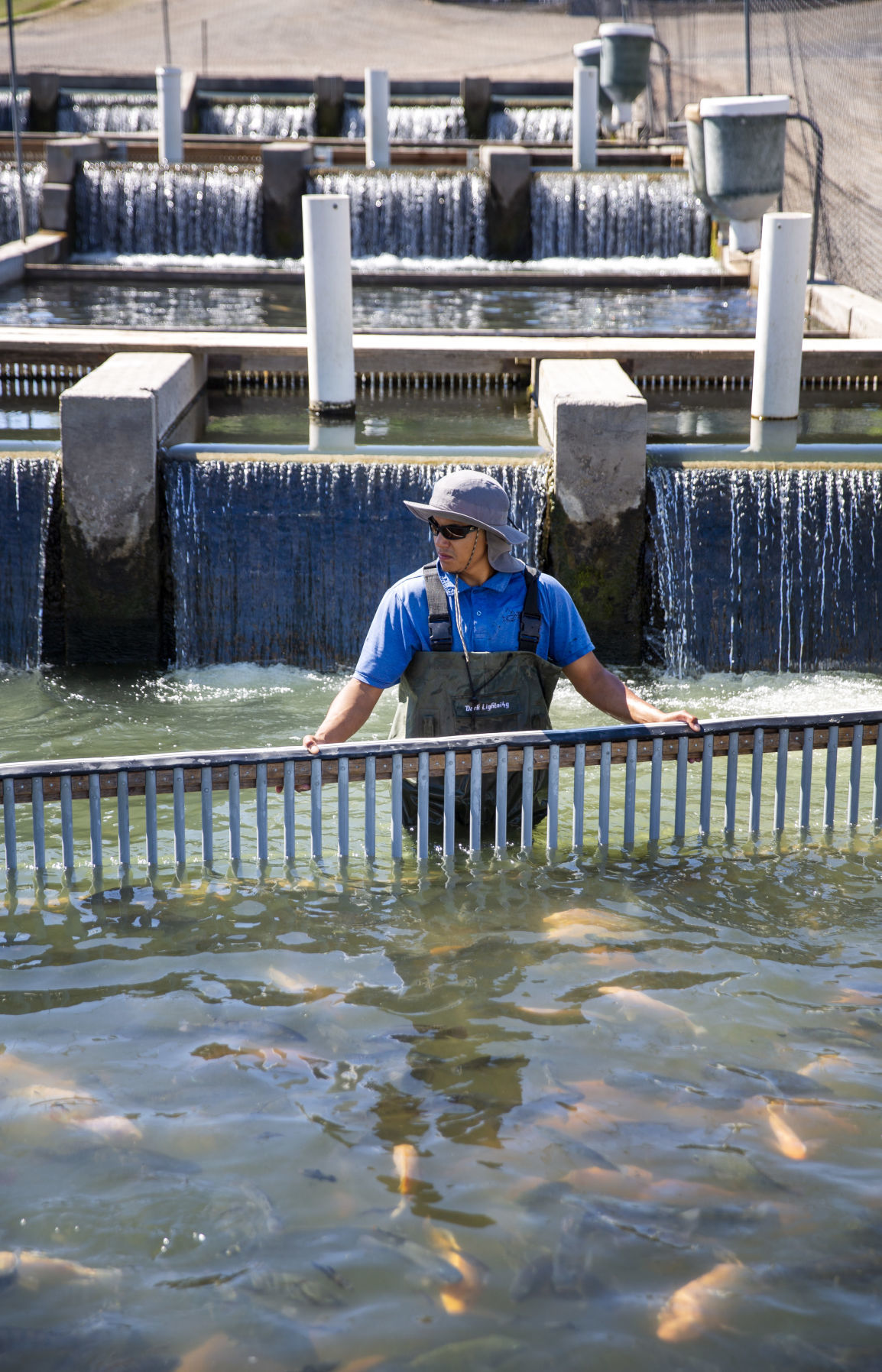 Aquaculture industry takes a hit with coronavirus closures