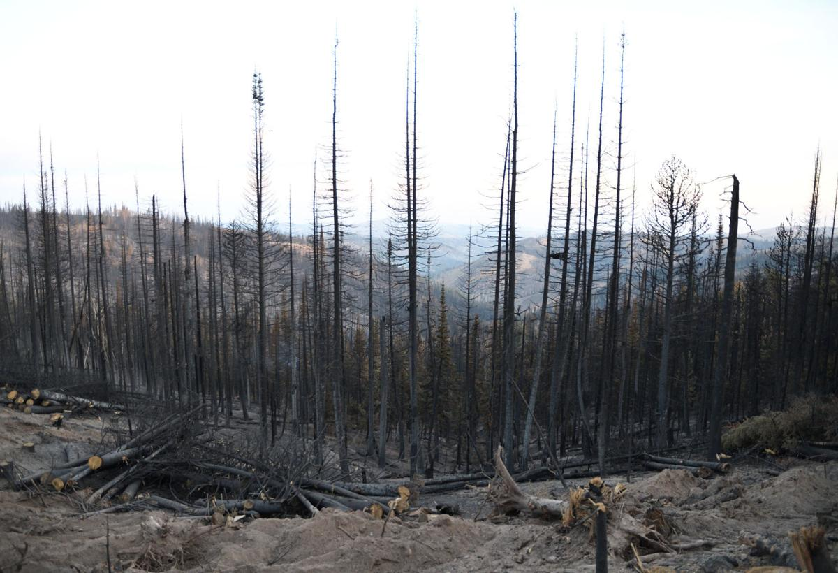 The Badger Fire