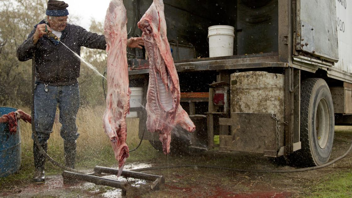 Dirty Jobs Video Mobile Butcher Kills A Pig
