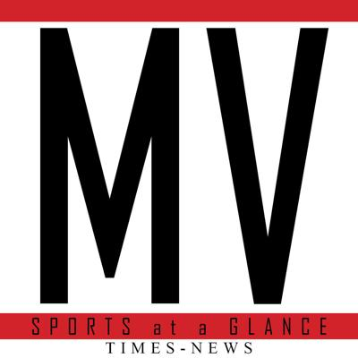 MV Sports at a glance logo
