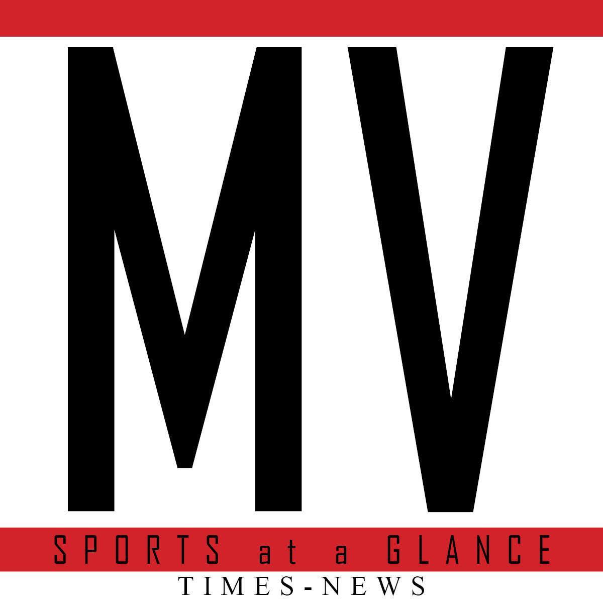 MV Sports at a glance logo