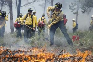 Prescribed burn coming to Rock Creek Canyon