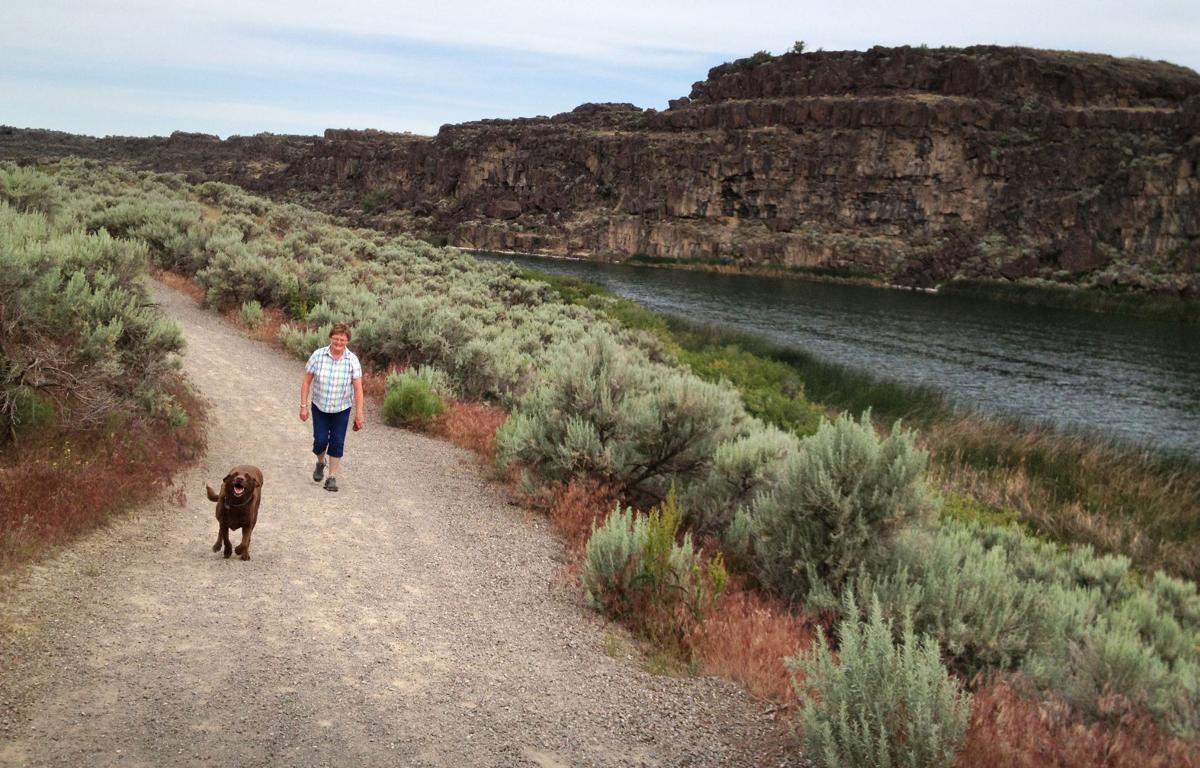 Dog Parks In Twin Falls Idaho