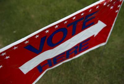 Voters take part in primaries