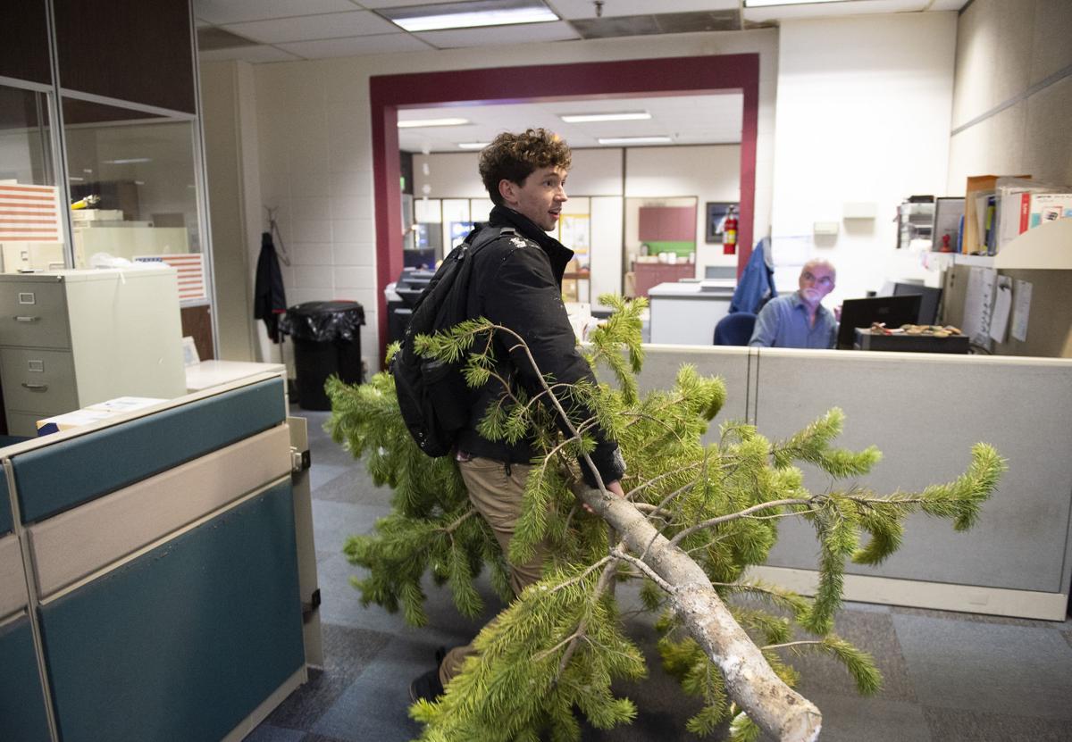 The biggest newsroom holiday tree yet!