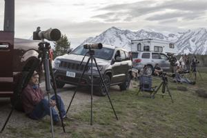 Emergence of famous Grand Teton grizzly with cubs draws fans