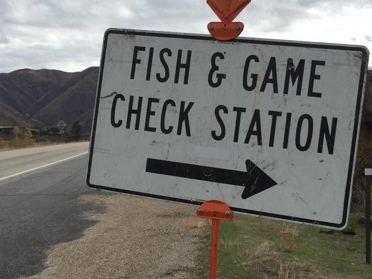 IDFG check station