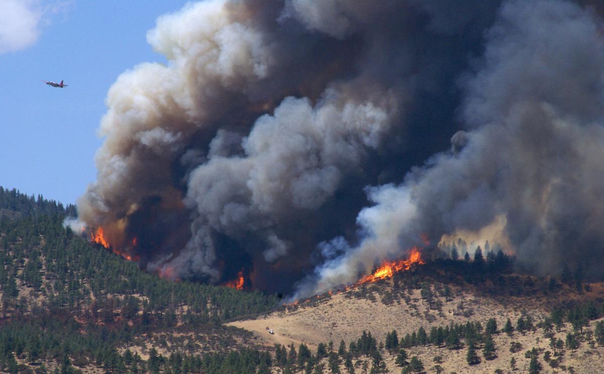 Murphy Complex Fire