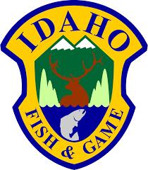 IDFG logo