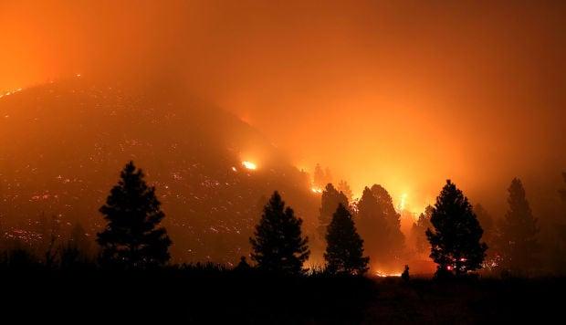 Idaho Elk Fire