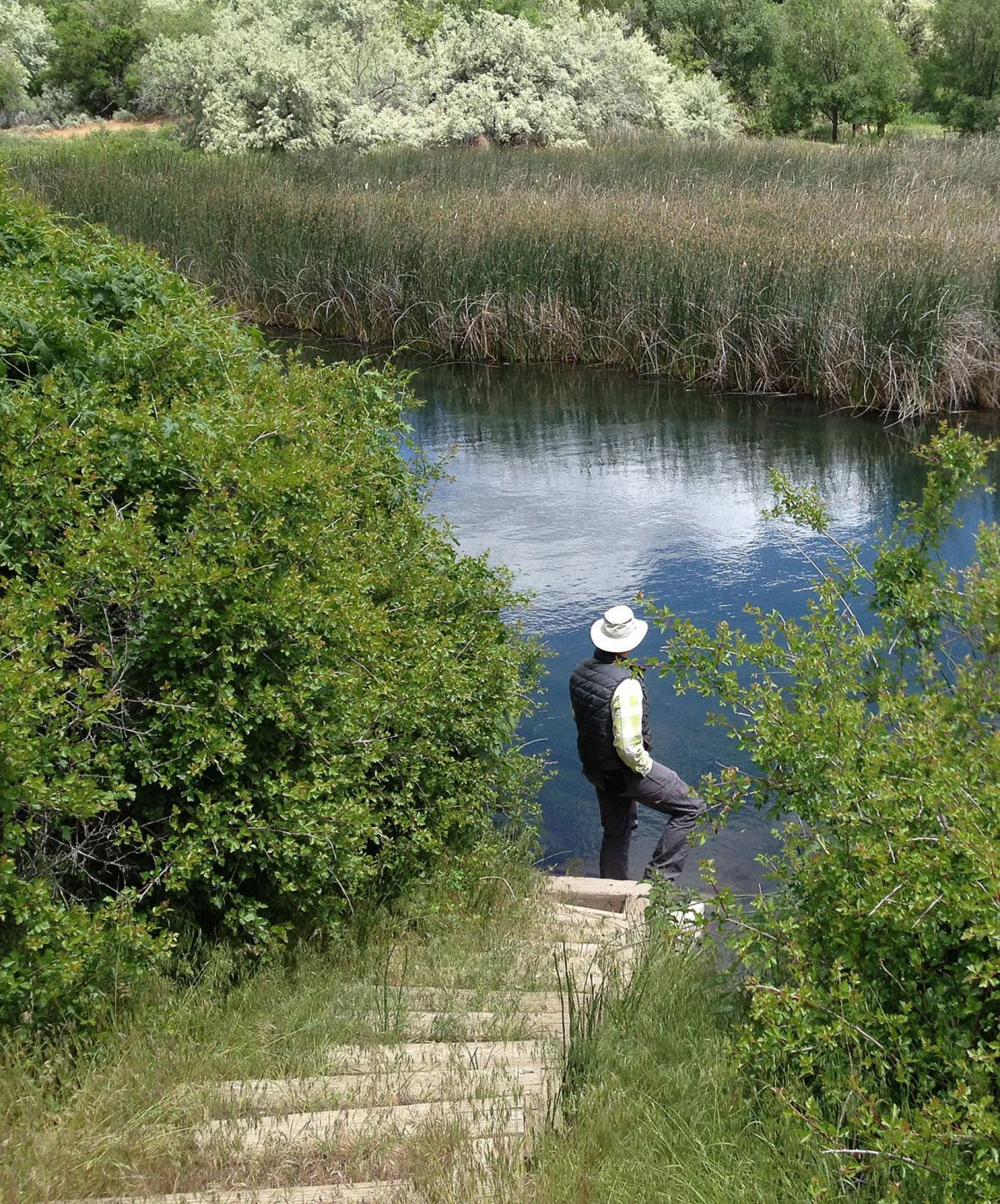 Billingsley Creek Wildlife Management Area
