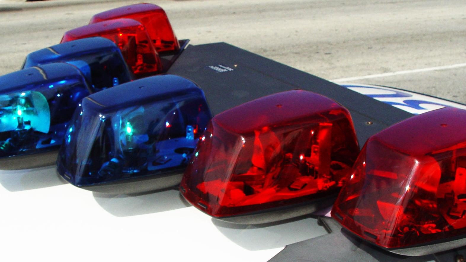 Truck hits horse on Interstate 84; second horse killed by deputy | Southern Idaho Local News