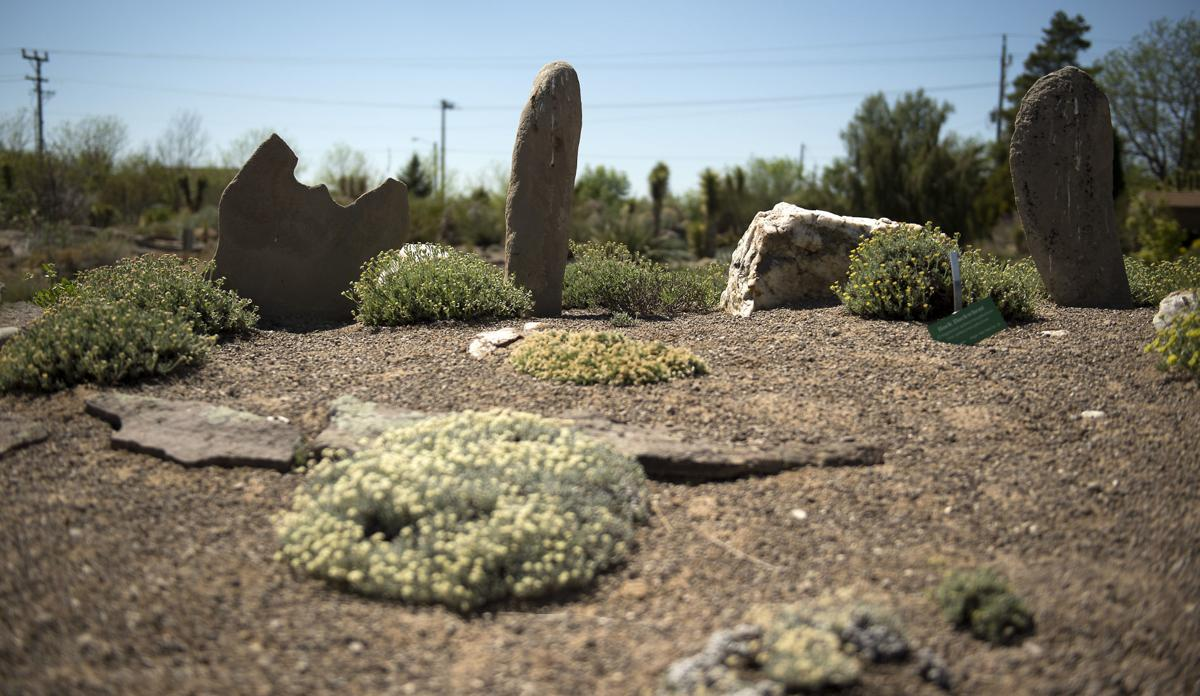 PHOTOS: Orton Botanical Garden is a hidden gem planted in Twin Falls ...