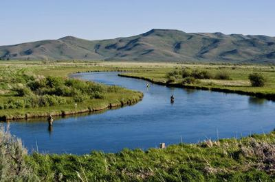 Water level, and optimism, rise at famed Idaho fishing creek