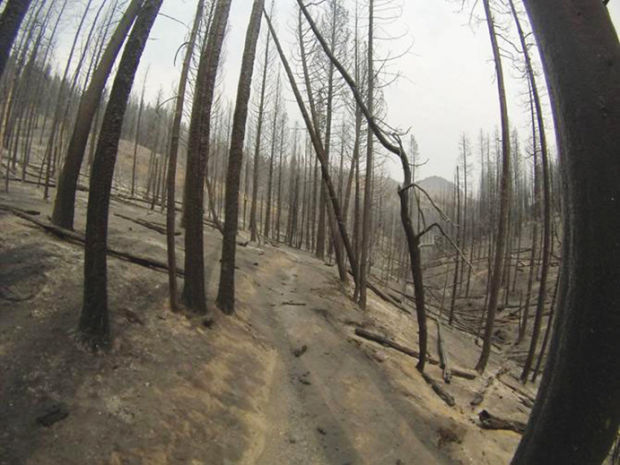 Rain Causes Mudslides in Fire-damaged Wood River Valley