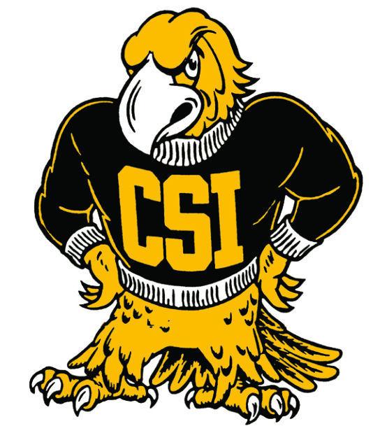 CSI old logo