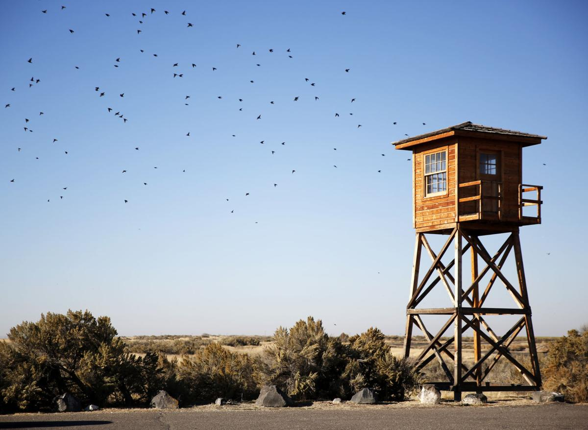 Hunt Camp tower