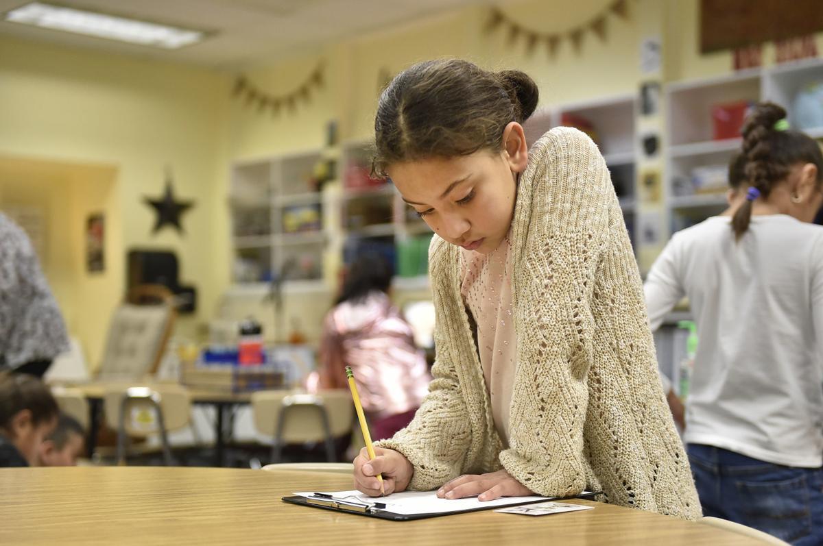 Taking a look at English language programs