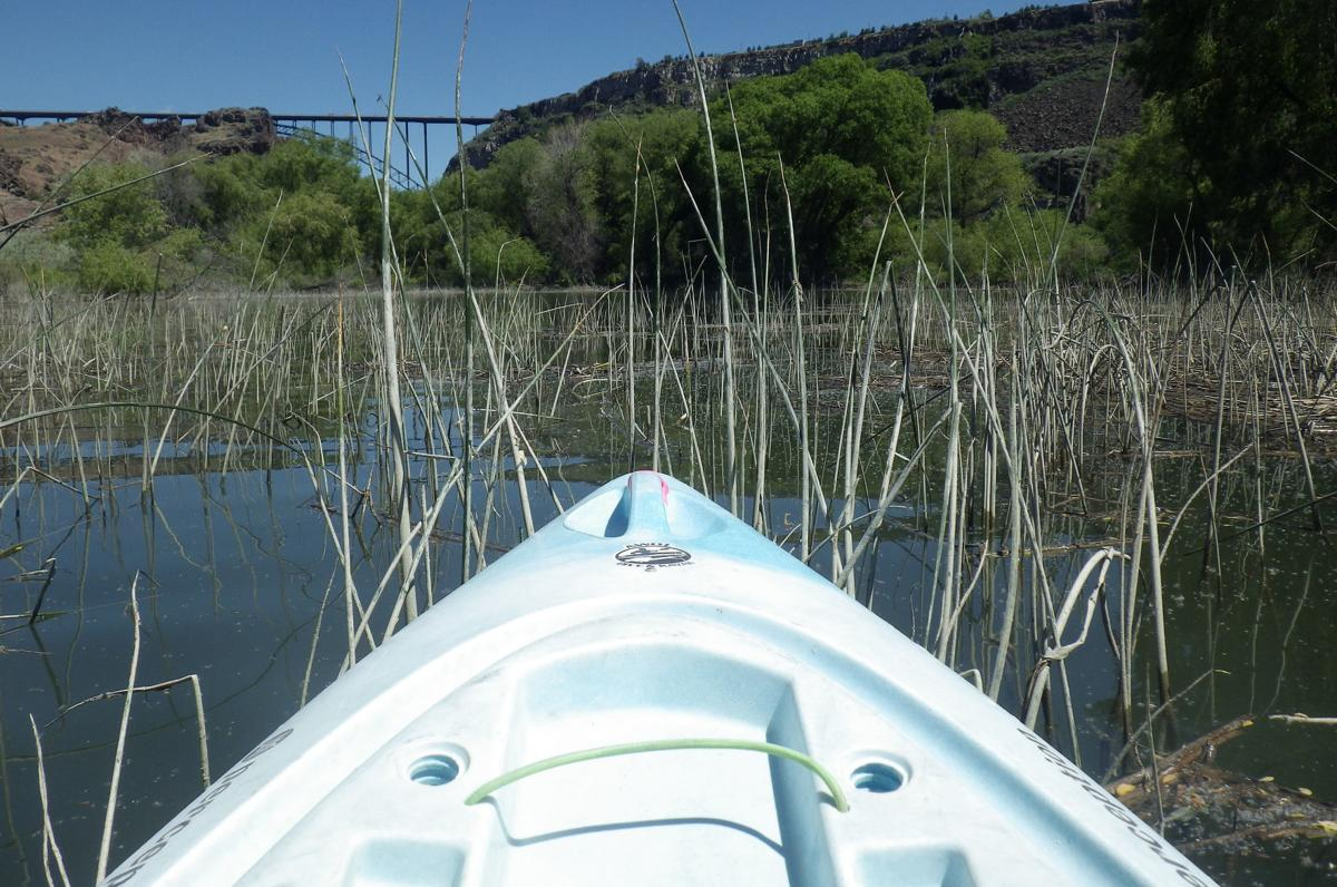 Exploring the Snake River
