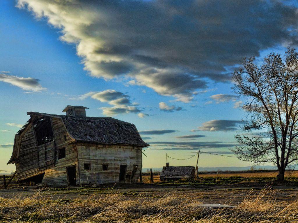 Cathy's Barn 1
