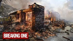 Insurance claims for Northern California wildfires top $9 billion