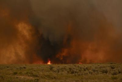 Wildfire burns near Declo (copy)