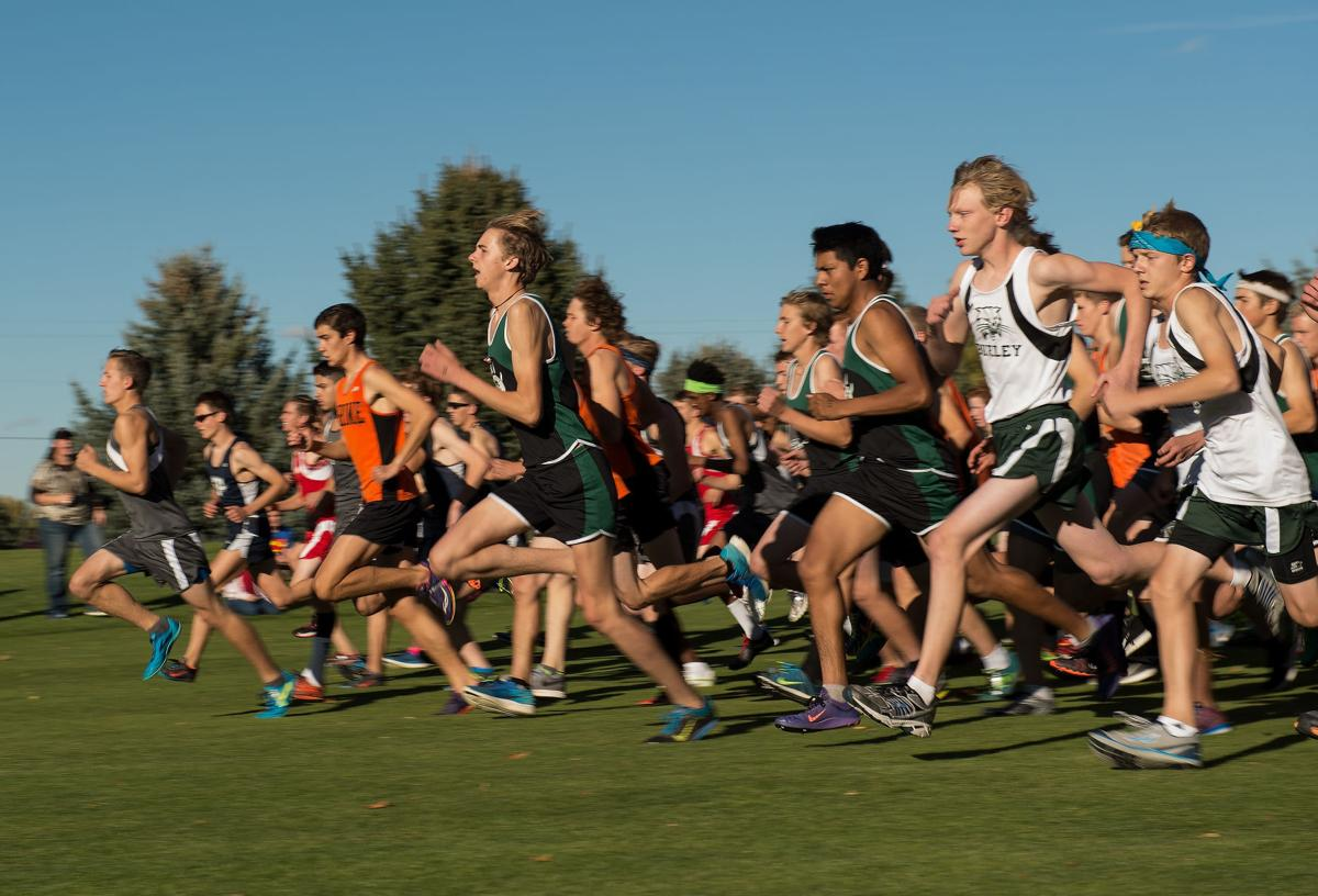 4A District IV Boys Cross-Country
